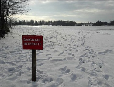 baignade-interdite