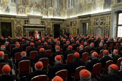 bonnets rouge les cardinaux