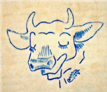 Taurau Image