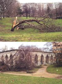 L'Orangerie de Château-Gaillard à Maisons-Alfort
