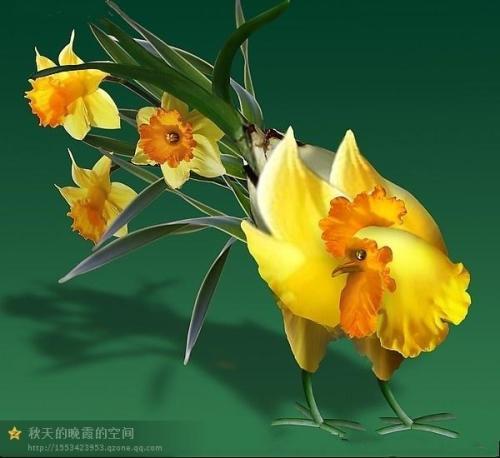Avec des fleurs 2