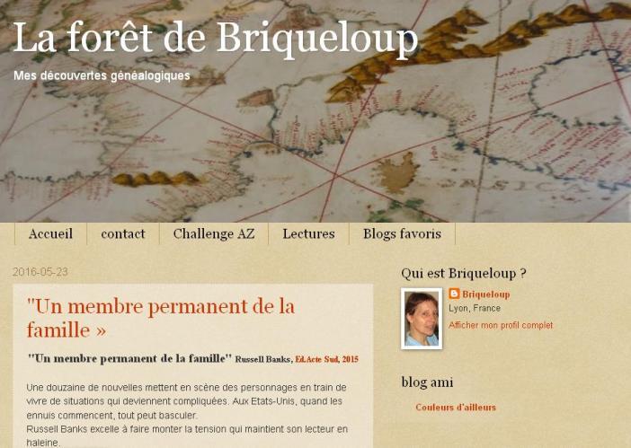 Briqueloup