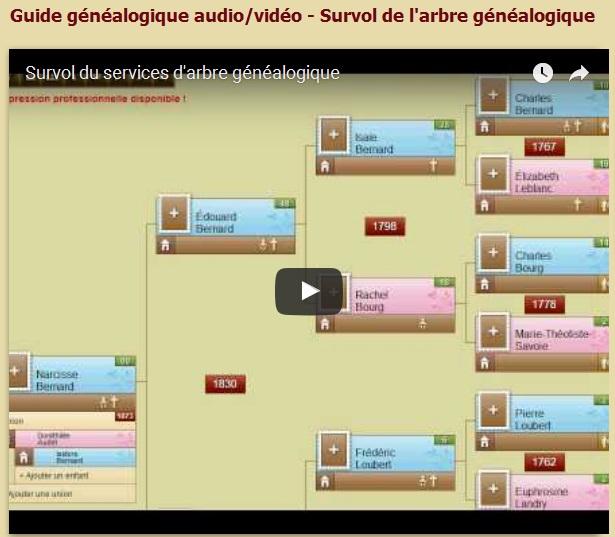 survolde-larbre-genealogique
